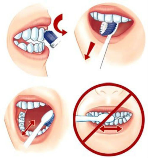 Cách đánh răng đúng cách 2